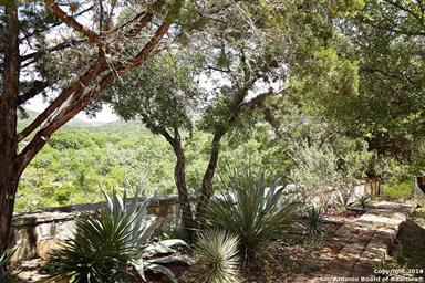 1556 Camino Del Rancho Photo #18
