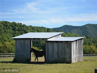 128 Shawnee Hill Trail Photo #23