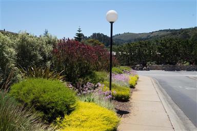 131 Hacienda Carmel Photo #24
