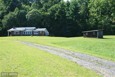 346 Riley Hollow Road Photo #19