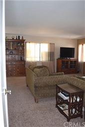 40656 Goldside Drive Photo #9