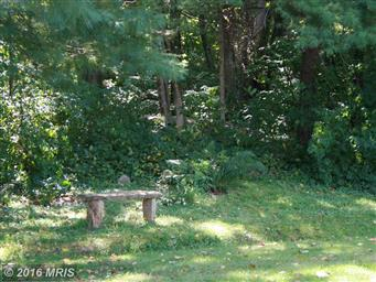 346 Riley Hollow Road Photo #23