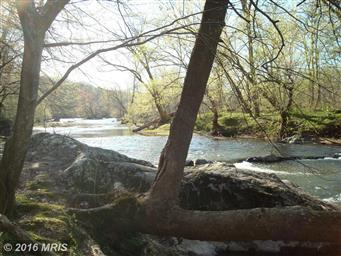 33017 River Mill Road Photo #2