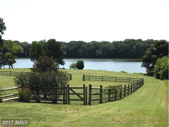 9784 White Swan Court Photo #6