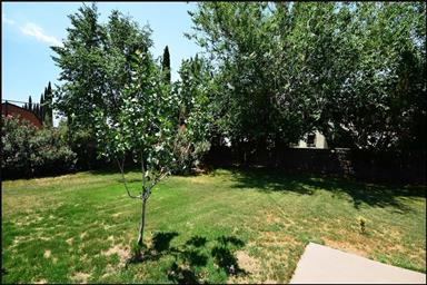 4057 Tierra Santa Place Photo #47