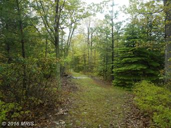 188 Lost Mountain Road Photo #28