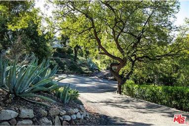 705 Toro Canyon Road Photo #16