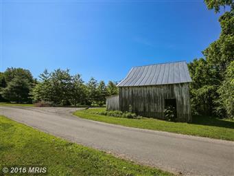 36 Meadows Lane Photo #12