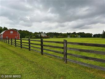 516 Goose Landing Farm Lane Photo #7