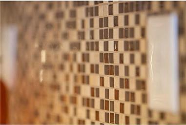116 Via Rojas Photo #10