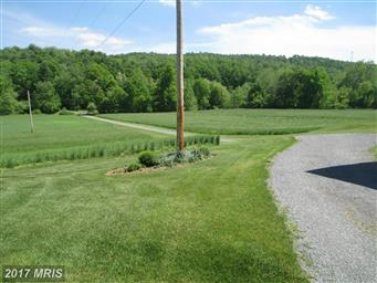 7191 Great Cove Road Photo #5
