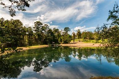 401 Crystal Creek Drive Photo #32