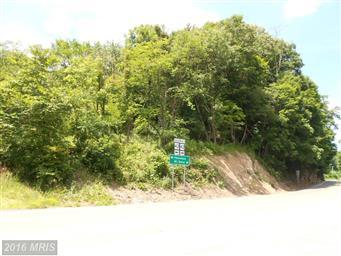 10421 Lunice Creek Highway Photo #4
