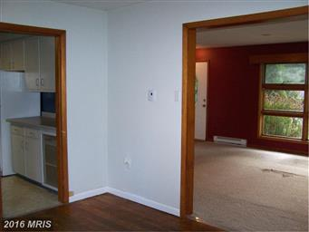 11609 Robinwood Drive Photo #16