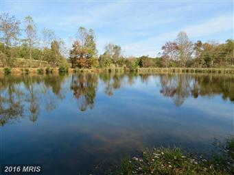 70 Shallow Creek Ln Photo #19