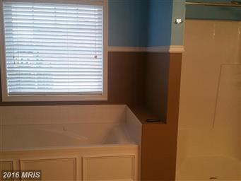 10767 Collinswood Drive Photo #20