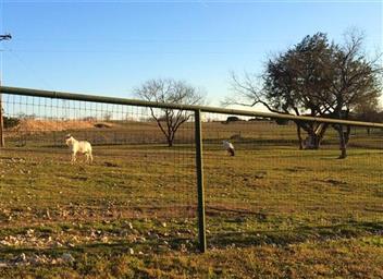2820 Talbert Ranch Road Photo #34