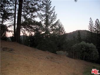 3381 Wildwood Road Photo #12