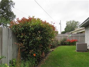 1203 Edgebrook Drive Photo #32