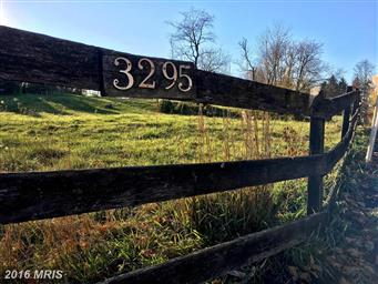 3295 Springview Drive Photo #2