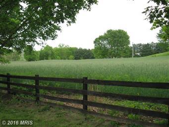 1769 Quicksburg Road #1771 Photo #5