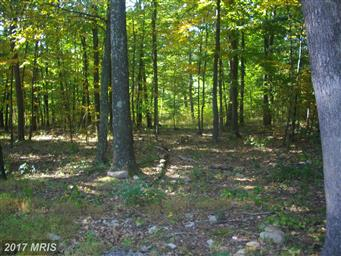 2160 Black Bear Road Photo #29
