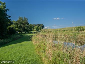 500 Country Tea Lane Photo #2