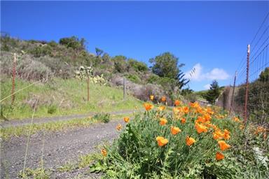 3750 Santa Rosa Creek Road Photo #40