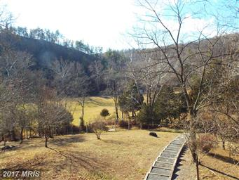 290 White Oak Trail Photo #6