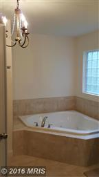 403 Mt Pleasant Dr Photo #13