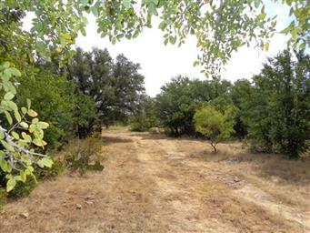 249 Private Road 2041 Photo #25