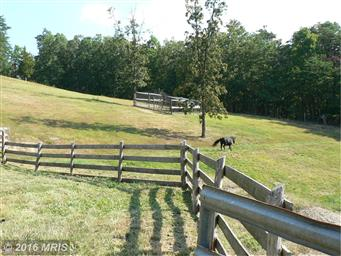 1754 Outlaw Trail Photo #3
