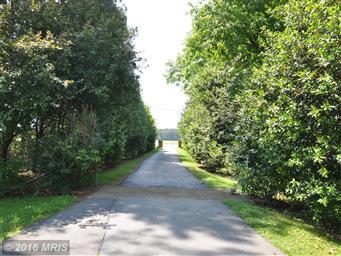 1820 Taylors Island Road Photo #3