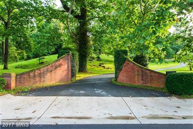 514 Amherst Street Photo #2