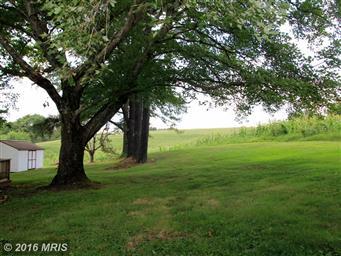 3401 Oak Park Road Photo #4