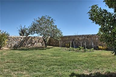 12764 Tierra Pueblo Photo #13