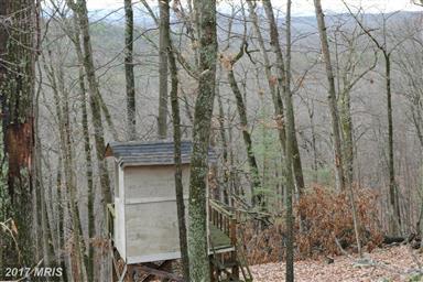 4388 Supinlick Ridge Road Photo #20