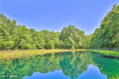 6007 Blue Water Drive Photo #5