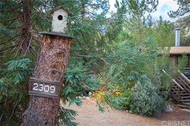 2309 Woodland Drive Photo #21