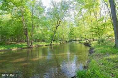 1389 Creek Road Photo #4