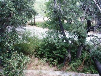 9034 Mesa View Road Photo #24