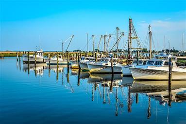 8407 Fishing Island Road Photo #37