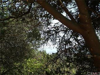 10105 Santa Rosa Creek Road Photo #6