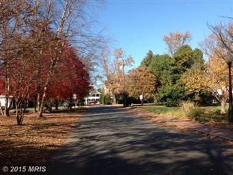 980 Ruscello Vista Ct Photo #40
