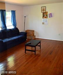 1166 Meander Drive Photo #7