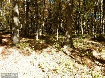 489 Wild Turkey Ridge Photo #8