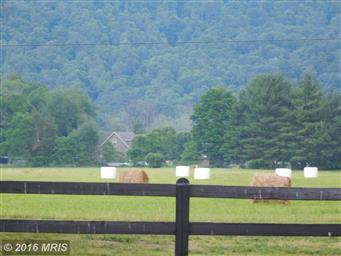 2525 Madley Hollow Road Photo #3