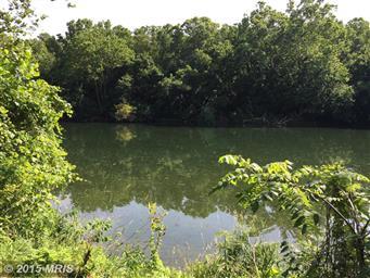 367 Canoe River Drive Photo #2