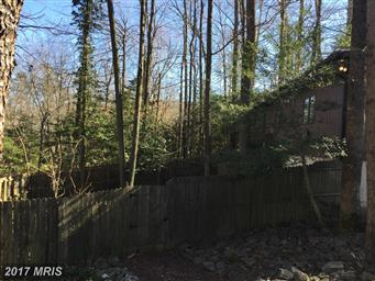 44848 Hickory Landing Way Photo #5