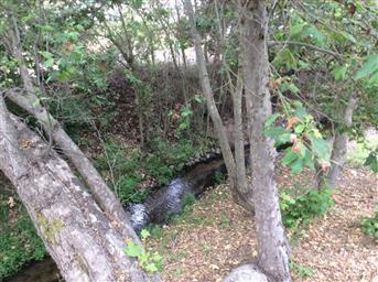 1056 San Juan Grade Road Photo #45